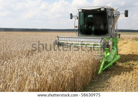 Machine harvesting the corn field - stock photo