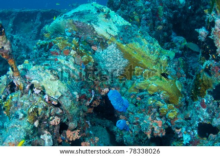 Machinery of a shipwreck completed encrusted with coral growth - stock photo