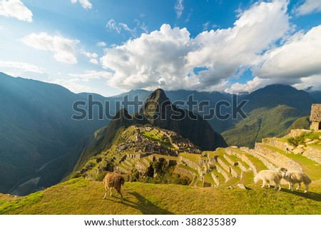 Machu Picchu illuminated by the last sunlight coming out from the opening clouds. Wide angle view from above with grazing llamas in the foreground and scenic sky. - stock photo
