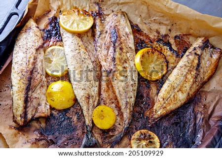 Mackarel fresh of the oven with lemons and spices - stock photo