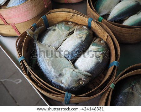 Mackerel fish in basket at market, Thailand