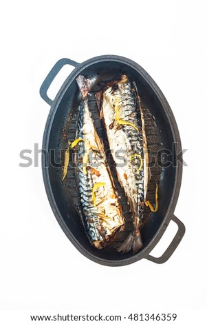 Mackerel fish in metal form for baking a white background.