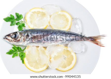 Mackerel in a dish with lemon and parsley. On a white background.