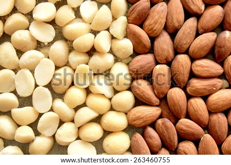 Macro Almonds and Macadamia Nuts 3 - stock photo