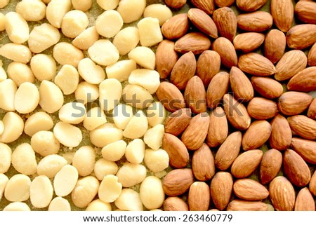 Macro Almonds and Macadamia Nuts 1 - stock photo