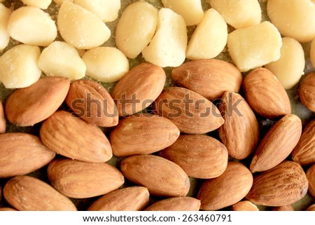 Macro Almonds and Macadamia Nuts 5 - stock photo