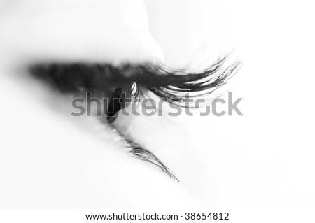 macro beautiful female eye - stock photo