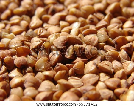 Macro buckwheat - stock photo