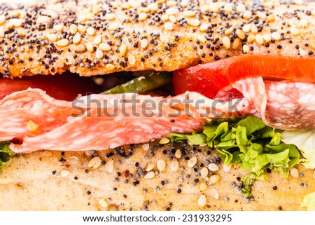 macro close up detail of a delicious salami sub sandwich - stock photo