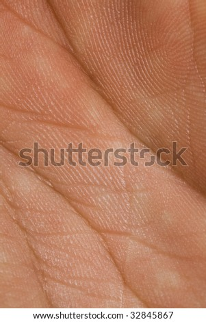 macro closeup human palm skin high stock photo 32845867 macro closeup human palm skin high stock photo 32845867