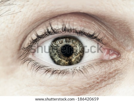 Macro closeup of male eye with eyelid eyelashes and interesting iris pattern - stock photo
