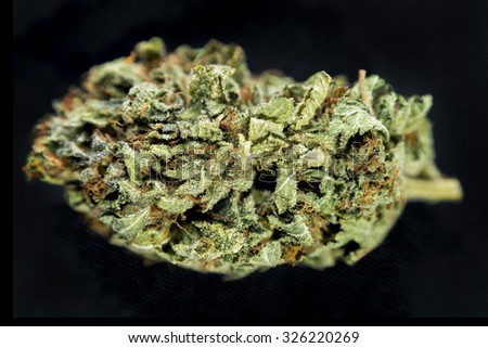 "Macro detail of a cannabis bud  ""Special K"" (hybrid) isolated over black background"
