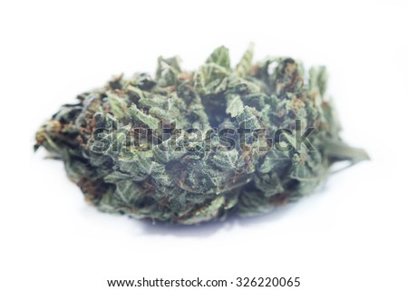 "Macro detail of marijuana bud  ""Special K"" (hybrid) isolated over white background"