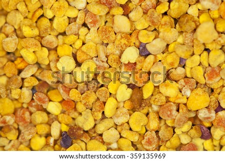 Macro detail of pollen  - stock photo