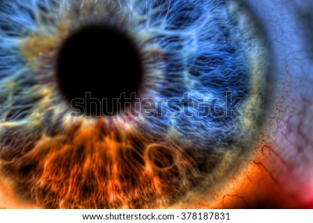 Macro Eye - Abstract extreme close up shot. Beautiful eye colored by a rainbow of colors. - stock photo