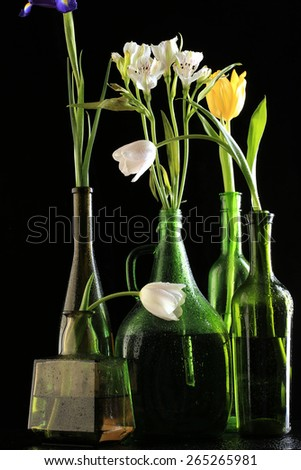 macro flowers in bottles covered with water drops on black background studio - stock photo