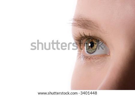 macro human beauty eye - stock photo