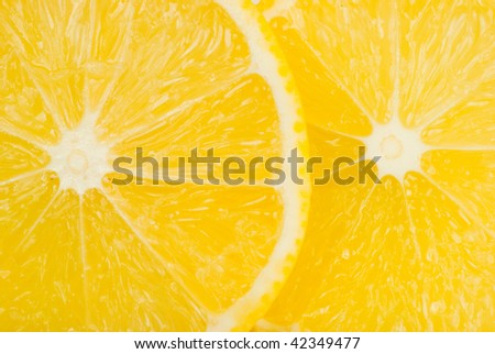 Macro image of a fresh sliced lemon - stock photo