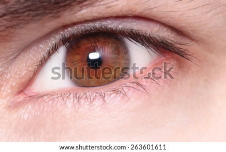 Macro image of a man's eye - stock photo