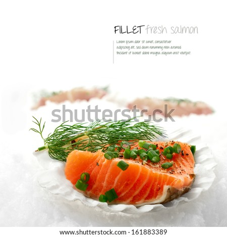 Macro image of fresh Salmon Fillets served in scallop shells placed on white snow. The perfect image for a fish restaurant or dinner menu cover. Copy space. - stock photo