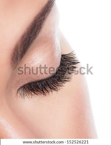 macro image of  long curly eyelashes over white background - stock photo
