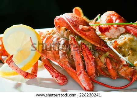 macro lobster with lemon beautifully decorated on a white plate on a dark background studio - stock photo