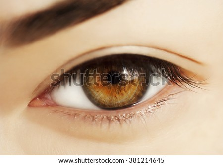 macro natural look woman eye