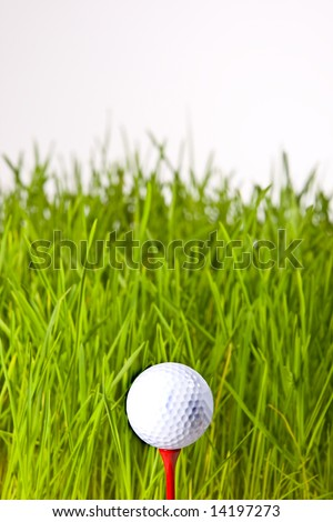macro of a golf ball in the rough (long grass adjacent to the fairway).
