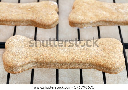 Macro of a homemade dog biscuits on a cooling rack. - stock photo
