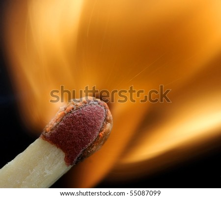 macro of a match - fantastic detail - stock photo