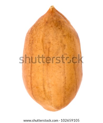 Macro of a peanut isolated on white - stock photo