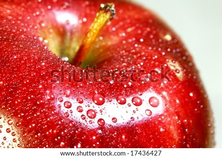 macro of a red delicious apple - stock photo