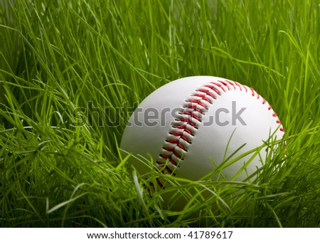 Macro of baseball hidden in tall green grass