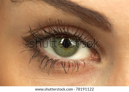 Macro of beautiful woman`s open green eye