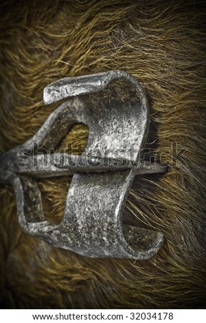 Macro of branding iron looking cold on cow hide. - stock photo