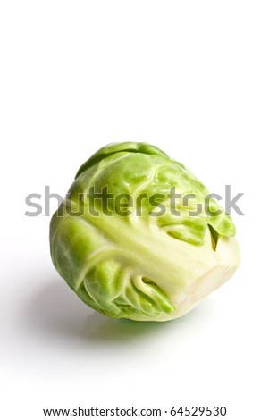 Macro of Brussels sprout isolated on white - stock photo