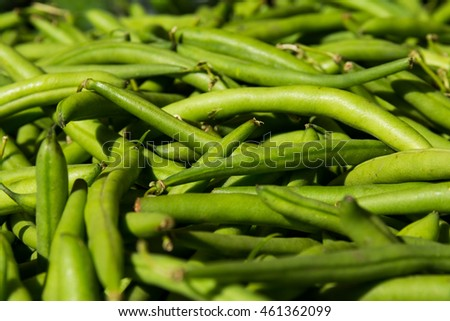 Macro of Bunch of Fresh Green Beans at Local Food Market