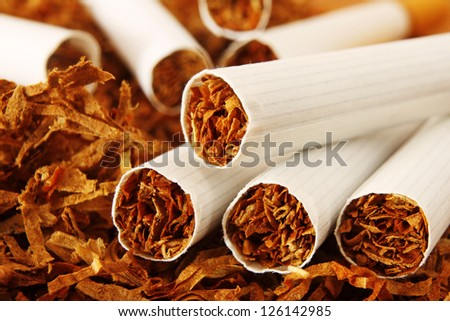 Macro of Cigarettes and Tobacco - stock photo