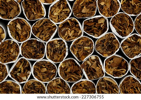 macro of cigarettes for backgrounds
