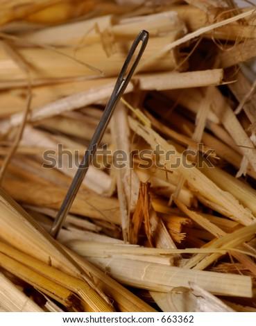 Macro of needle in a haystack - stock photo