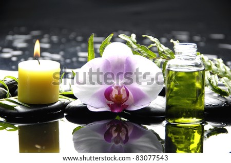 Macro of orchid and massage oil and candle with fern on pebble reflection