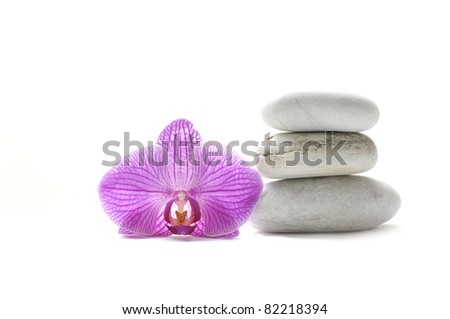 Macro of pink orchid and stones tower