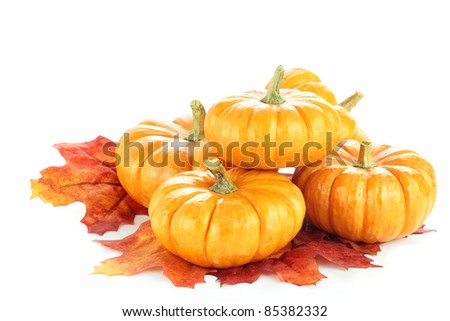 Macro of pumpkins and autumn leaves isolated on a white background. Clipping path included.