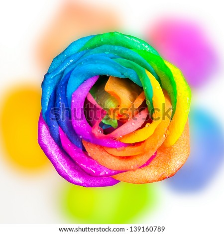 Stock images similar to id 51689053 bunch of multi for Multi colored rose petals