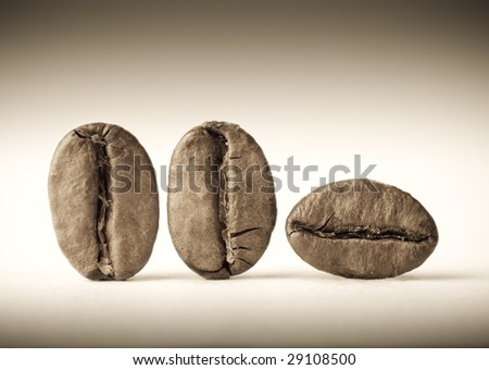 Macro of three coffee beans. Sepia tone. Shallow DOF. - stock photo