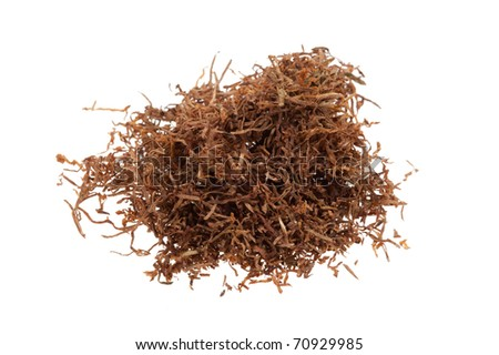 Macro of tobacco isolated on a white background - stock photo