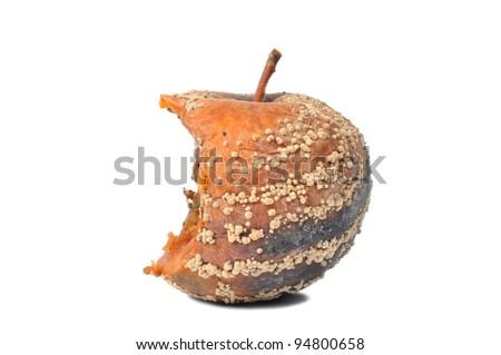 Macro of ugly rotten apple isolated on white background - stock photo