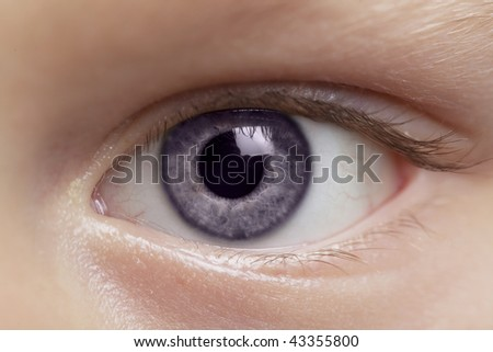 Macro photo of beautiful young boy's eye