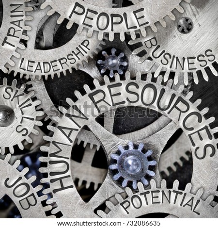 Macro photo of tooth wheel mechanism with HUMAN RESOURCES, PEOPLE, JOB, TRAIN, SKILLS, BUSINESS, POTENTIAL and LEADERSHIP concept words