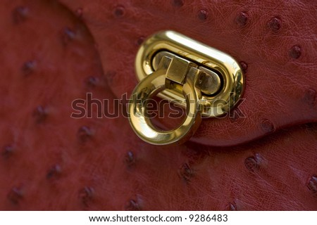macro picture of a vintage ostrich leather hand bag